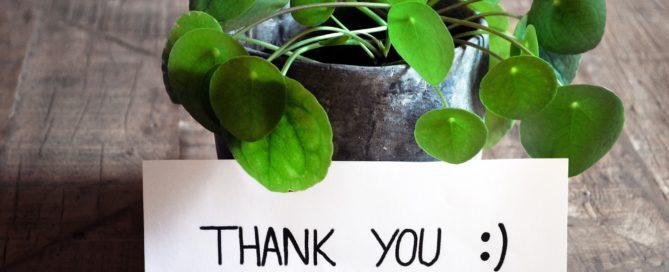 Gratitude in Tampa