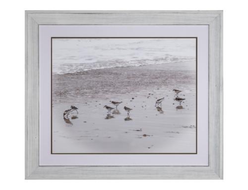 Framed sandpiper art
